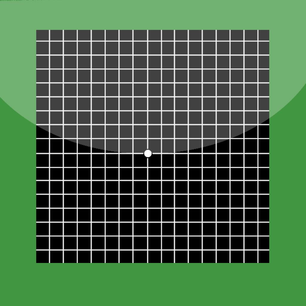 Full Screen Amsler Grid full screen amsler grid genre medical price $ ...